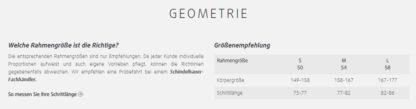 Schindelhauer Frieda Geometrie