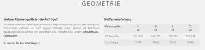 Schindelhauer Friedrich Geometrie